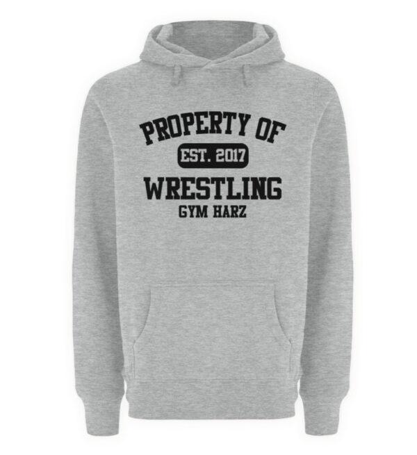 Property Wrestling Gym Harz - Unisex Premium Kapuzenpullover-6807