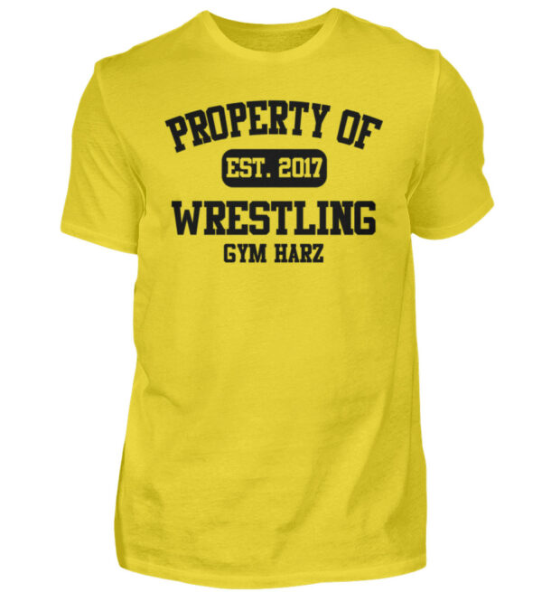 Property Wrestling Gym Harz - Herren Shirt-1102