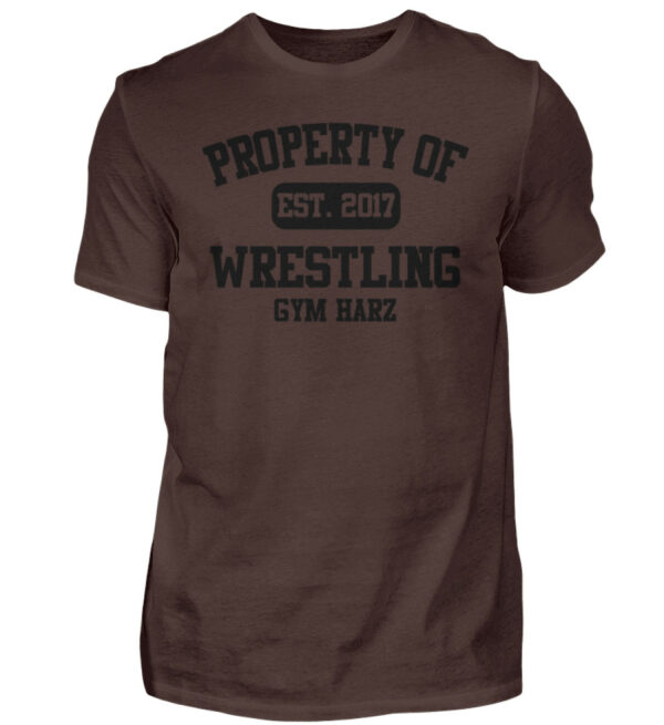 Property Wrestling Gym Harz - Herren Shirt-1074
