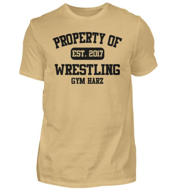 Property Wrestling Gym Harz - Herren Shirt-224