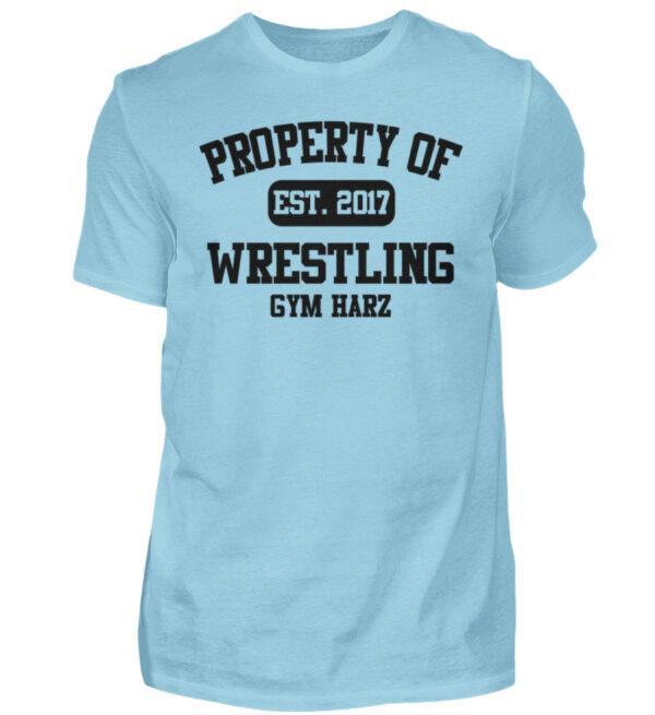 Property Wrestling Gym Harz - Herren Shirt-674