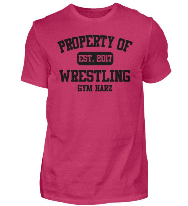 Property Wrestling Gym Harz - Herren Shirt-1216