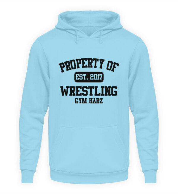Property Wrestling Gym Hoodie - Unisex Kapuzenpullover Hoodie-674