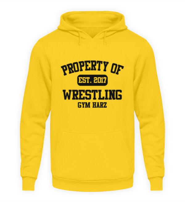 Property Wrestling Gym Hoodie - Unisex Kapuzenpullover Hoodie-1774