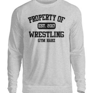 Property Wrestling Gym Harz Sweatshirt - Unisex Pullover-17